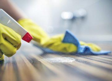 Conoce cómo mantener tu casa limpia libre de virus